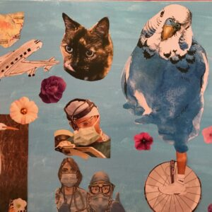 A collage with a plane, two birds, a cat, people wearing face masks and a portrait of a person.