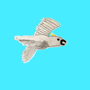 A drawing of a flying cockatoo bird on a bright light blue background.