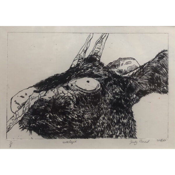 The head of an Antelope in black on off white paper