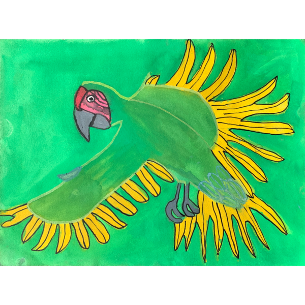 A green and yellow Macaw flying infront of a green background.